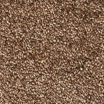 Flax Seed Brown