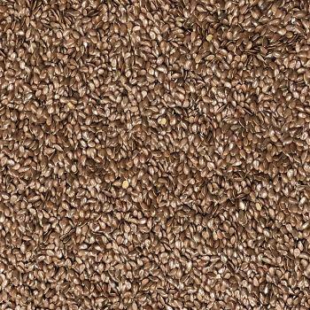 Flax Seed Brown