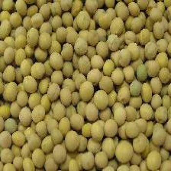 Peas - Yellow Whole